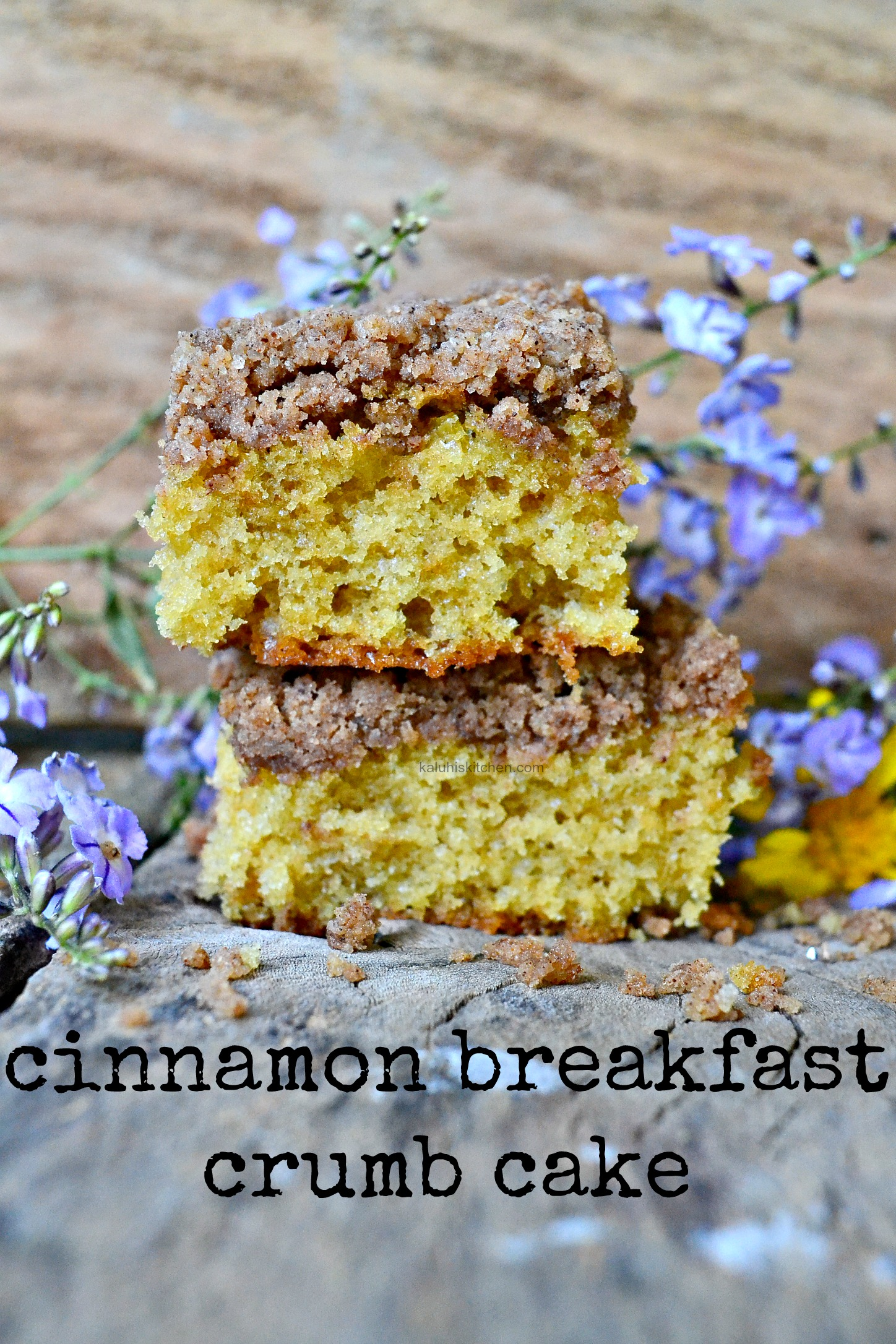 breakfast crumb cake with cinnamon_kaluhiskitchen.com_how to make a crumb cake_best african food blogs_best african food bloggers